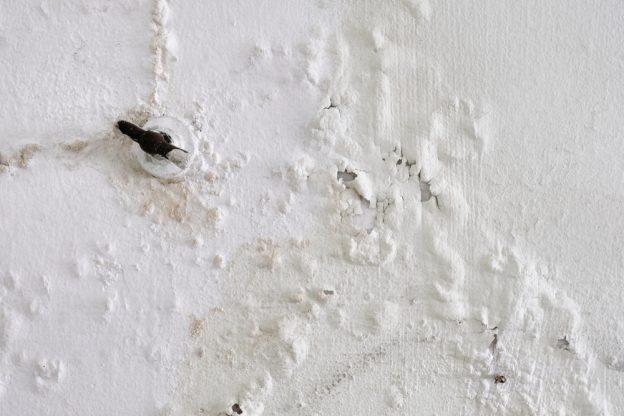 Detect Leak Behind Walls